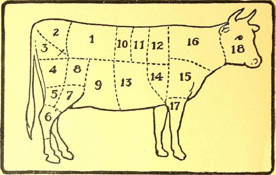Vlees, de heilige koe in het klimaatdebat