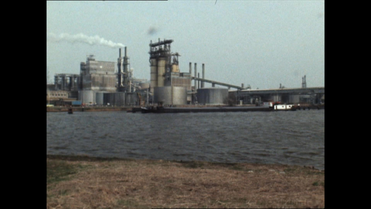 Beerput Nederland: decennia van gedoogde milieucriminaliteit