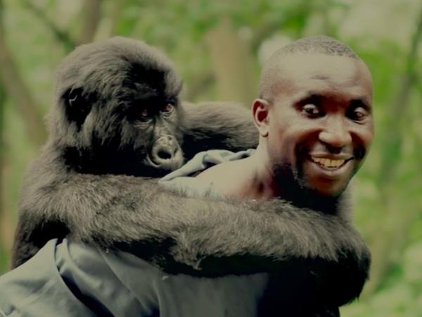 Virunga IDFA Netflix